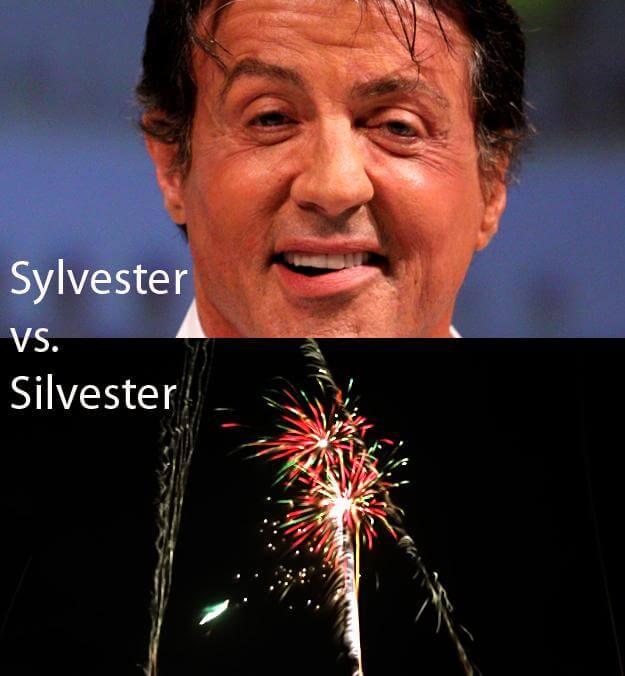 sylvester-vs-silvester